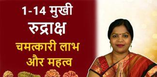 1-14-mukhi-rudraksha-laabh