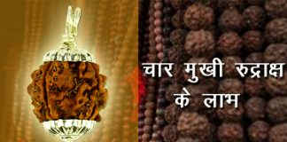 Benefits of 4 Mukhi rudraksha