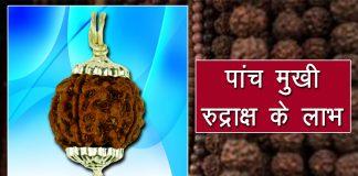 5 mukhi rudraksha benefits